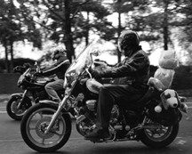 Stuffed Riders